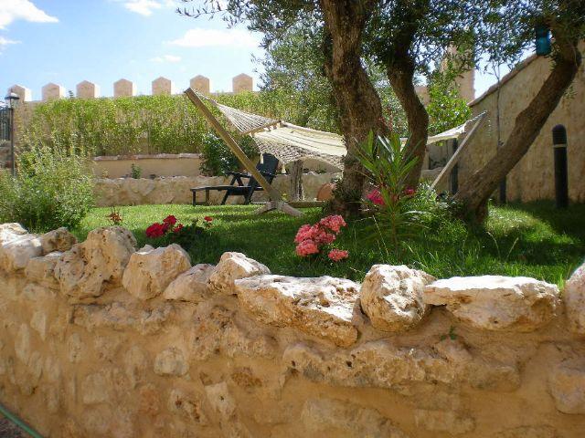 jardin olivo y hamaca 1 - Casa rural con piscina