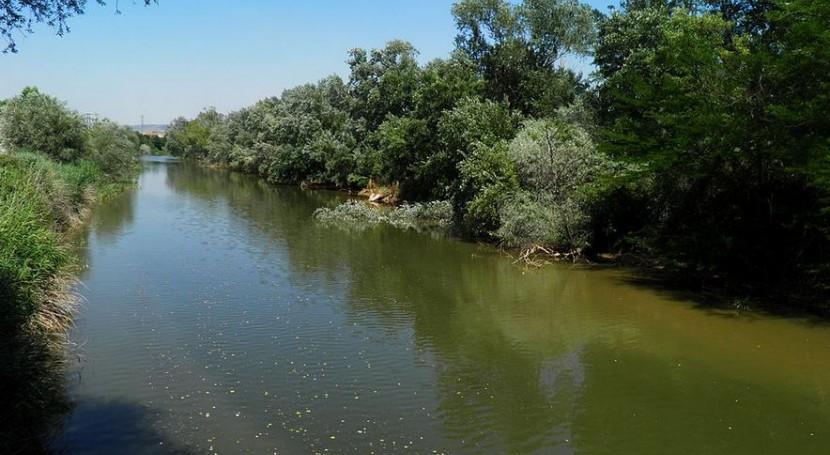 riohenares 1 - Proyecto Río Henares